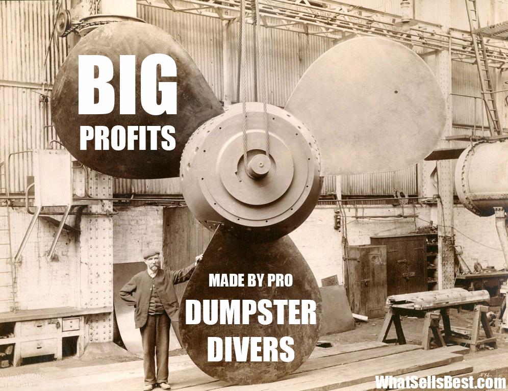 Dumpster Diving Treasures